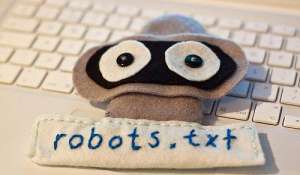 Robots.txt Nedir ?  Nasıl Oluşturulur ?